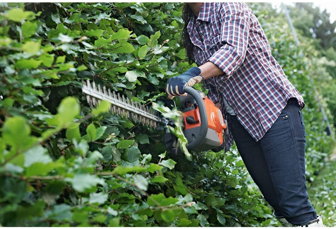Top 10 Best Hedge Trimmer Reviews trim and shape with the best hedge trimmers